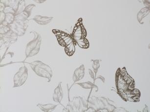 chambre papillons4